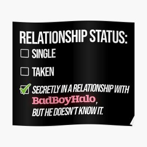 Relationship with BadBoyHalo Poster RB0206 product Offical Technoblade Merch